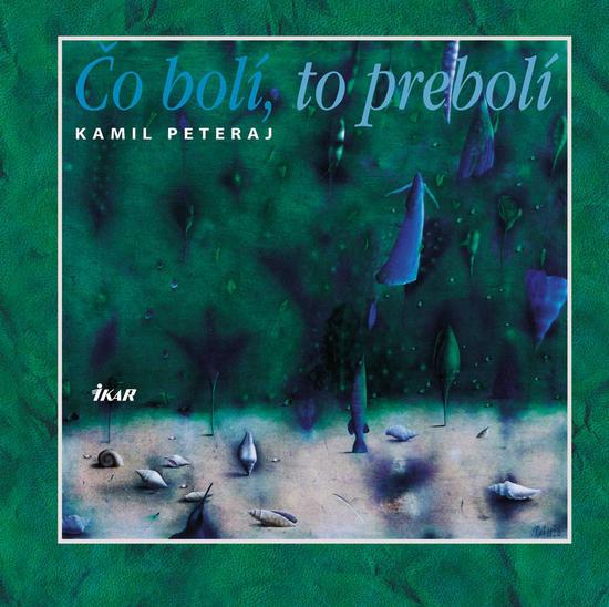 Kniha: Čo bolí to prebolí (Kamil Peteraj)