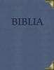 Detail titulu Biblia (s kovovými rožkami)