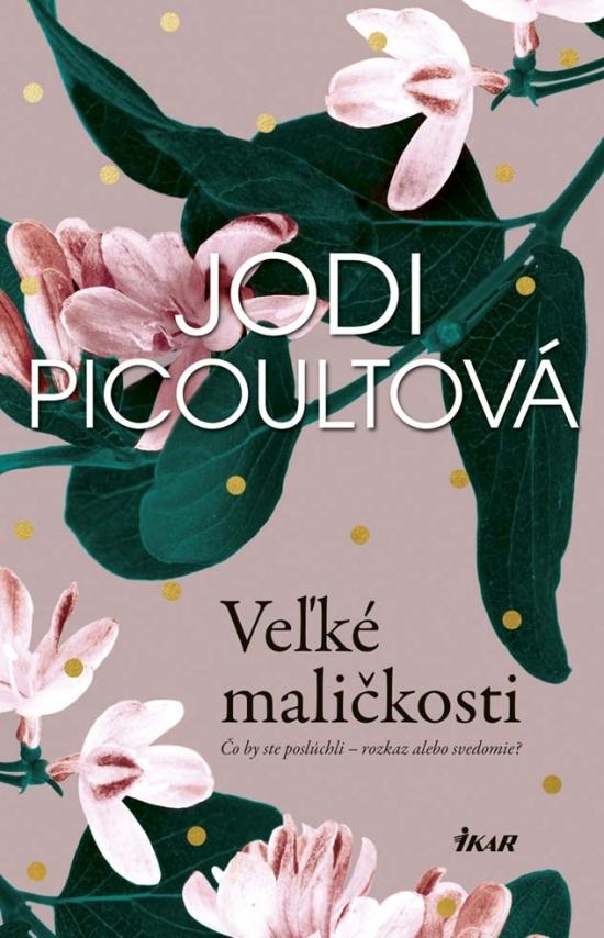 Veľké maličkosti - Jodi Picoultová