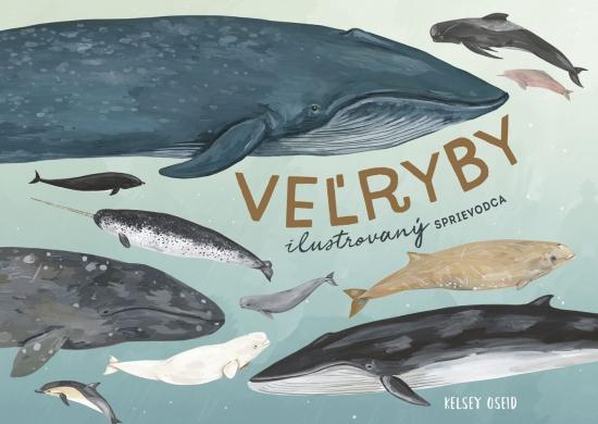 Veľryby: ilustrovaný sprievodca