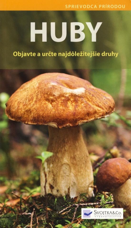 Huby - Objavte a určte najdôležitejšie druhy - Angelika Lang