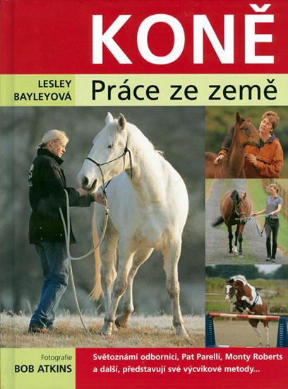 Koně - práce ze země - Lesley Bayleyová