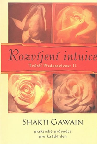 Rozvíjení intuice - Tvůrčí představivost II.