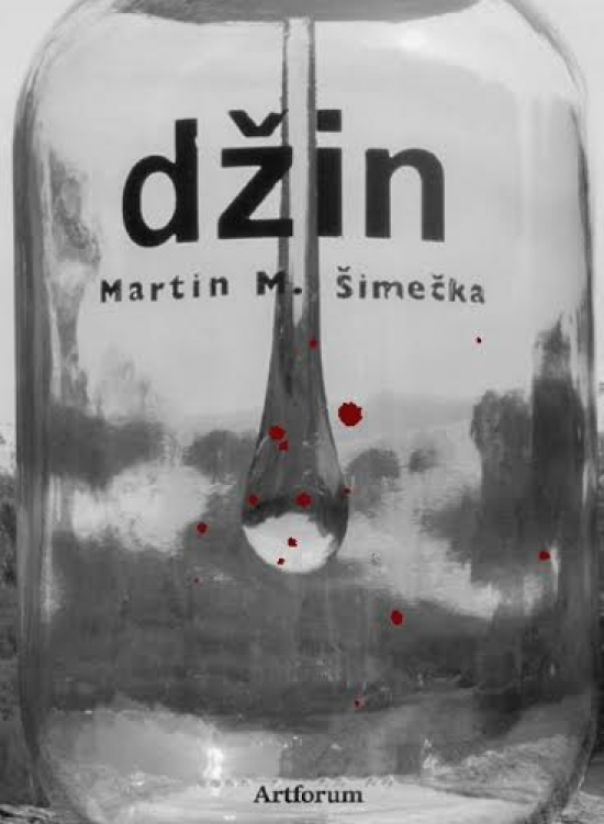 Džin - Martin M. Šimečka