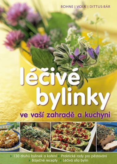 Léčivé bylinky ve vaší zahradě a kuchyni