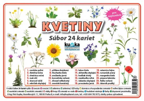 Súbor 24 kariet - kvetiny - Petr Kupka