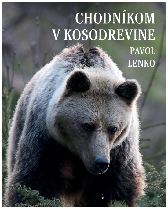 Chodníkom v kosodrevine - Pavol Lenko