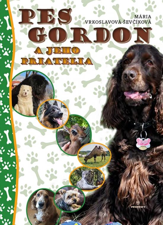 Pes Gordon a jeho priatelia - Mária Vrkoslavová-Ševčíková
