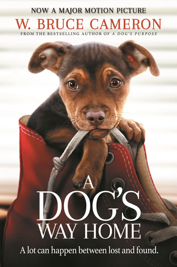A Dog´s Way Home : The Heartwarming Story of the Special Bond Between Man and Dog - W. Bruce Cameron