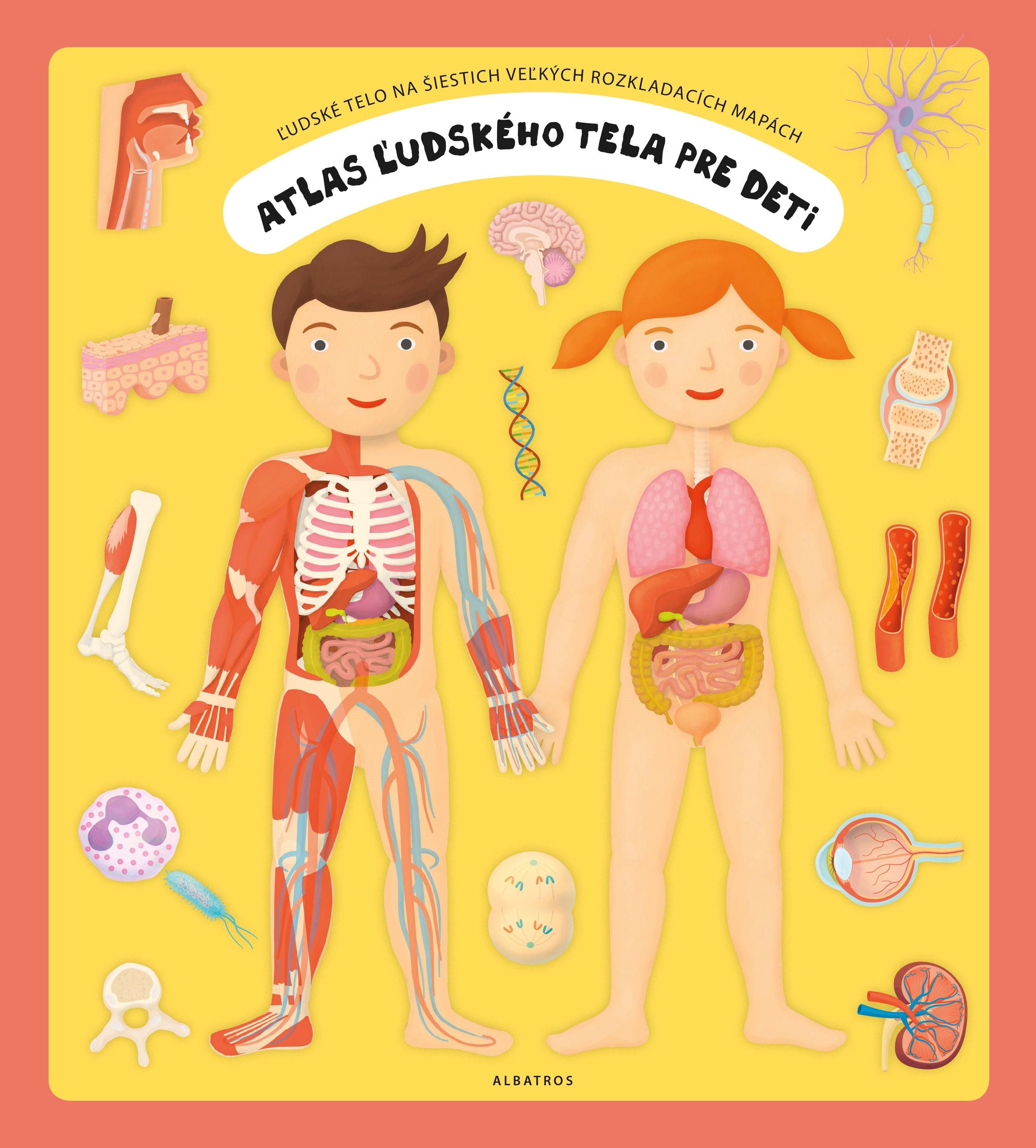 Atlas ľudského tela pre deti - Oldřich Růžička