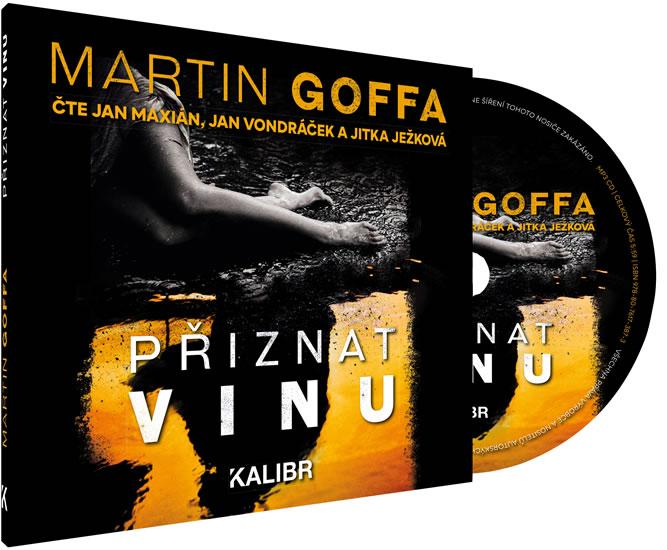 Přiznat vinu - audioknihovna - Martin Goffa