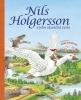 Detail titulu Nils Holgersson a jeho zázračná cesta